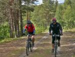 Cesta v lese - Jotunheimen