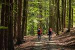 Český les na kole