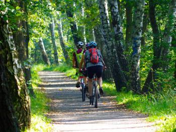 Spreewald na kole