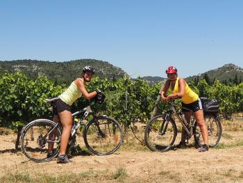 Provence na kole: Od Verdonu až po Camargue